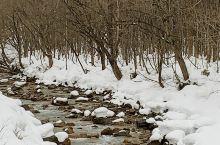 今年秋田雪小;不及往年的1/3。进了乳头温泉鄉还有点雪。 千秋公园 千秋公园  【景点攻略】 详细地