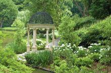 长木公园内的温室花卉 有很多稀有品种 最爱在兰花区伫足 花香弥漫 美不胜收  诺大的户外庭院区 由最