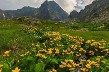 吕宋岛的荒山野岭!