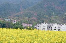 一个小众的地方,因昨日青空这个电影比大家熟知,朴实的小县城与油菜花田,真的很美