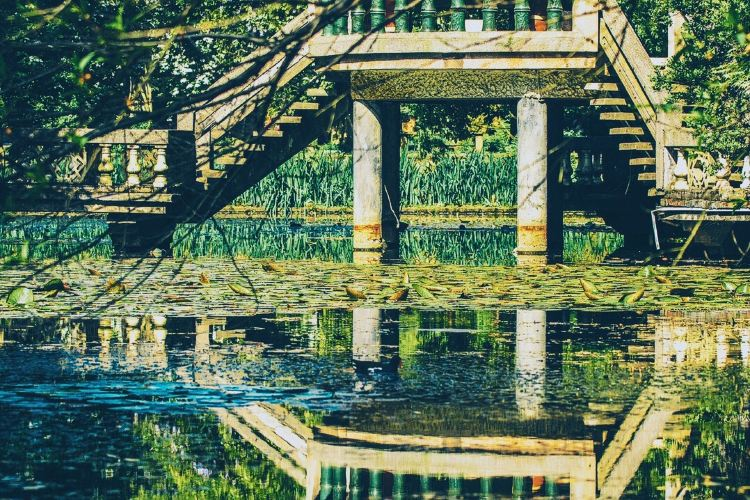 Wuhan Botanical Garden3