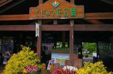 2019.05.14日本时间09:00,日本九州岛游第三日,上午驶抵距下榻久住高原酒店不远的花公园。