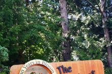 布查特花园就是美化一个废弃的石灰岩采石场,包括下沉花园,玫瑰花园,日本花园,星池,意大利花园,小广场