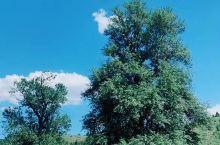 乌鲁木齐南山风景区一角