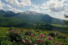 新疆行第八天  这里就是人间的亚德兰蒂斯!!!如果说你来新疆跟团游的话,看到的也有可能仅是乌鲁木齐大