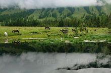 喀纳斯新疆最美的地方