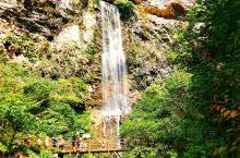 集山、水、洞于一身的张家界地貌的博物馆,在此可观赏到北温带喀斯特地形的全部风景。 峡谷里植被茂盛,空