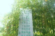 石头村落,竹隐圣贤,夏天到秋天竹泉村的竹子还是很有看头。