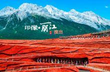 玉龙雪山海拔4000多米是纳西人的一座神山,至今无人登顶! 简要:带着一份好奇新鲜的心情早上5点就出