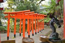 大树庇佑下的神社  因为十分喜欢《伊豆的舞女》这部作品,今年来日本玩的时候就去了一趟伊豆半岛,据说当