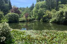 二刷宝翠花园,美不胜收,哪里还有矿井的样子,不愧世界十大花园