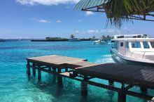 距离马累机场十五分钟的船,船费不便宜不过如果当作中转去往其他岛屿休息的酒店是不错选择,入住的水屋 还