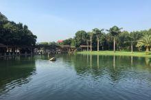 中秋去了一趟弥勒,去了湖泉酒店,环境很好,温泉也有特色,适合放松休闲。