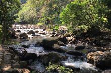 广州出发开车去较为方便,景区山路蜿蜒曲折,溪流水量充沛,百花绽放,可赏花可戏水,巍峨石门景点旁有两棵
