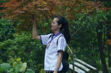 微风不燥 阳光正好,这个秋天你迈开了脚步了吗? 姑婆山国家森林公园位于广西东北部;湘、桂、粤三省(区