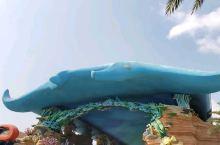 被海洋王国小动物治愈的一天【景点攻略】 详细地址:珠海海洋王国  交通攻略:我们广州出发,直接约车到