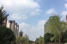 仁寿县街景,十分优秀的街道