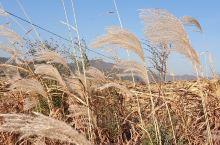岫岩·鞍山  美丽的村庄。