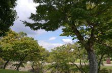 奈良公园及附近,去年去的这个地方。