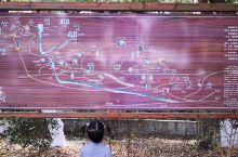 《庐山九江·秀峰》趁着大好的天气,下午的飞机,星子的朋友一家人早上开车带我到秀峰去走走。因为长久的干