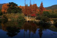 五彩斑斓习家池1:今天受朋友之邀,前往习家池给她们同学游玩习家池拍照。时隔半个月又来到习家池,看到这