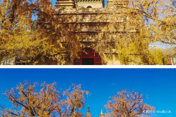 Zhenjue Temple1