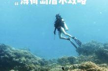 菲律宾薄荷岛潜水全攻略潜水爱好者天堂  去年9月拿了AOW的潜水证,今年五一第一次尝试fun di
