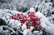 2020第一场雪