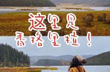 秋日的普达措像极了那神秘的香巴拉王国!  这是10月底的香格里拉,树叶微黄,天气渐冷。  浓厚的秋意