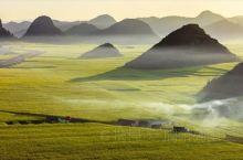 """云南罗平。罗平-油菜花的代名词,绵延数十里的油菜花,好似金浪滔滔的海洋,是名副其实的""""金玉满堂之乡"""""""