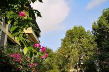 《来自罗源的诱惑:我真的想要去旅游……》  我是孤独浪子,希望我的拍拍让您有所收获。 漫游神州31载