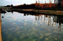 《来自微山的诱惑:我真的想要去旅游……》  我是孤独浪子,希望我的拍拍让您有所收获。 漫游神州31载