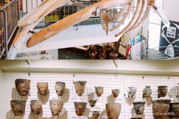 Shiretoko Museum2