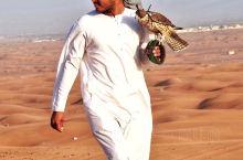 充满速度与激情的迪拜沙漠冲沙
