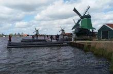 荷兰传统项目: 风车,奶酪,郁金香
