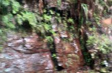 不惧艰险免费洗车,桂林龙脊梯田路上,最近雨季山路形成多个小瀑布,十分危险,可是这辆小白车还免费淋浴。