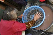 苏州是虾也是花,吃花就吃虾。