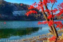 韩国首都首尔东南方向六十公里的南怡岛,四季风景非常漂亮的旅游度假小岛,其中秋季风景最佳,红色,黄色,