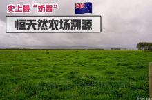 """【Mow~史上最""""奶香味""""的旅行推文】  受邀参加世界Top3乳制品企业——恒天然集团的新西兰奶源农"""