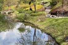 翡翠花园,是出乎意料的美,很久就知道这个地方,但是对韩国的花园,没什么特别的好感,拖了这么久,才来到