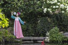 四月的季节,春暖和曦,柔软的气息总在不经意间扑面而来。花都开好了,而我想邀你去惠山古镇看一场万花盛典