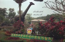 2016年12月23日 海南六日游-海南热带野生动植物园 因为带着大侄子出来玩,所以去动植物找小动物