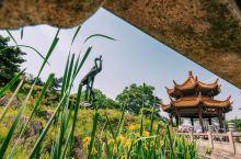 去湖北必去 黄鹤楼  相当于去 西安 必去兵马俑一样 黄鹤楼建于 蛇山 之上,登上楼顶远眺, 武汉