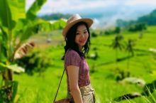 巴厘岛东部的特立刚阁水宫,吝啬的花了三个小时做游客,去水上皇宫,和做传统手工艺编织品的村子里逛逛,水