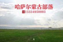 扎旗草原风景