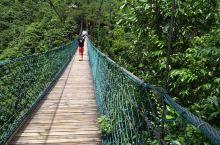 2019.7.15俺在走起山中的长木桥…