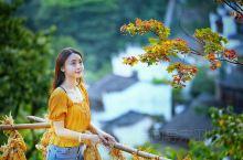你不是不喜欢秋天, 你是不喜欢秋天的时候容易掉眼泪。  秋天的落叶不是无可奈何, 是落叶归根后生生不