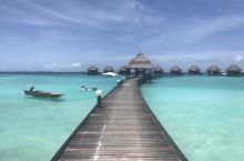 马尔代夫蓝色美人蕉和维拉瓦鲁海龟岛双岛游