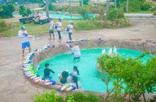 pic度假酒店可以说是亲子欢乐度假胜地了 环绕酒店一圈的漂流 数不清太多太多的泳池游乐设施 好遗憾这