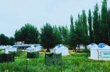 包头城中草原,一个隐藏在城市中的超级绿地。七月是草长莺飞的季节,这片草原在城市的包围中展现出迷样的美